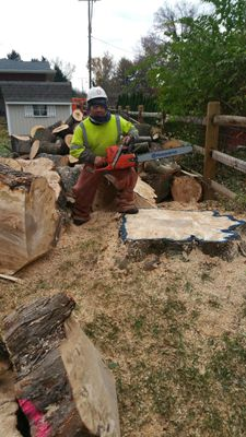 Flores tree services Columbus, OH Thumbtack