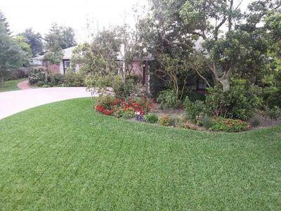 Raymond Morris lawn care service Ormond Beach, FL Thumbtack
