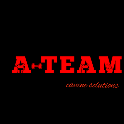 A-team Canine Solutions Youngstown, OH Thumbtack