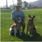 In Total Command Dog Training San Diego, CA Thumbtack