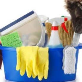 Adriana cleaning services Stoneham, MA Thumbtack