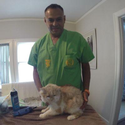 Alameda Mobile Animal Care Alameda, CA Thumbtack