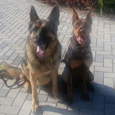 A Best Friend Certified Professional Dog Training Ruskin, FL Thumbtack
