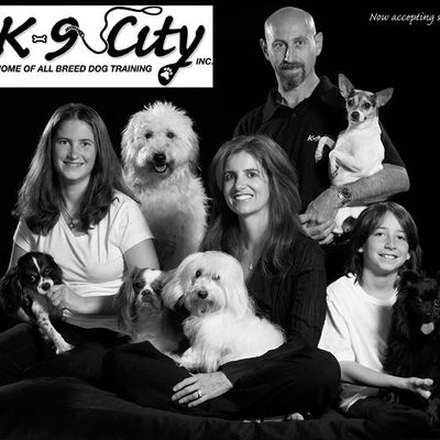 K9 City Play 'n Stay inc. San Juan Capistrano, CA Thumbtack