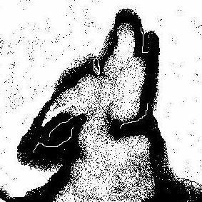 Moon Dog Massage, LLC Dayton, OH Thumbtack