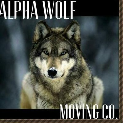 Alpha Wolf Moving Suitland, MD Thumbtack