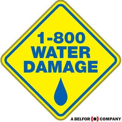 1-800 Water Damage of W. Ann Arbor/Jackson/Lansing Ann Arbor, MI Thumbtack