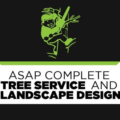 ASAP Complete Tree Service and Landscape Design Lake Worth, FL Thumbtack