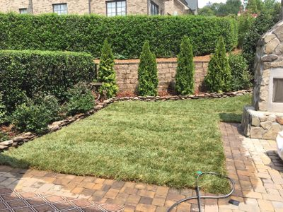 GoGreen Lawn&Landscaping Charlotte, NC Thumbtack