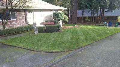 4-Ever Green Lynnwood, WA Thumbtack