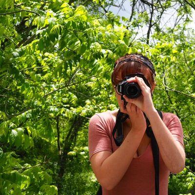 NikkiSink Photography Bethlehem, PA Thumbtack