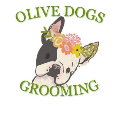 Olive Dogs Grooming Salon Hastings, MN Thumbtack