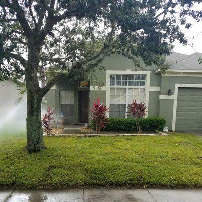 Peirgreen Orlando, FL Thumbtack