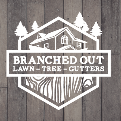 Branched Out Gutters Grandview, MO Thumbtack