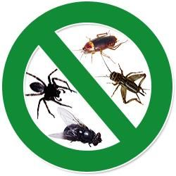 4 Seasons Pest Management Aurora, CO Thumbtack