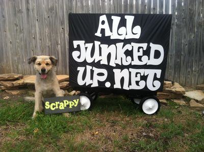 All Junked Up  Junk Removal and Hauling Fort Worth, TX Thumbtack