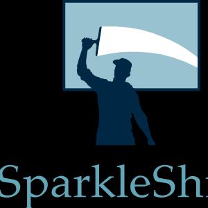 SparkleShineDFW