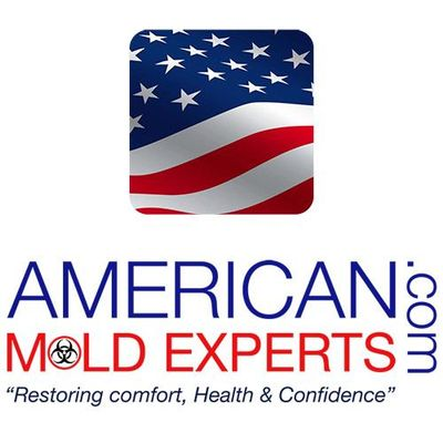 American Mold Experts, Mold Assessment, Mycotoxin Testing, Mold Remediation Avon, IN Thumbtack