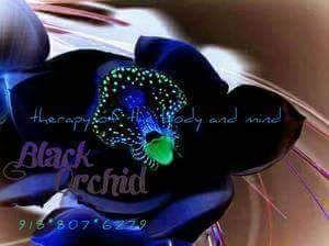 Black Orchid Tulsa, OK Thumbtack