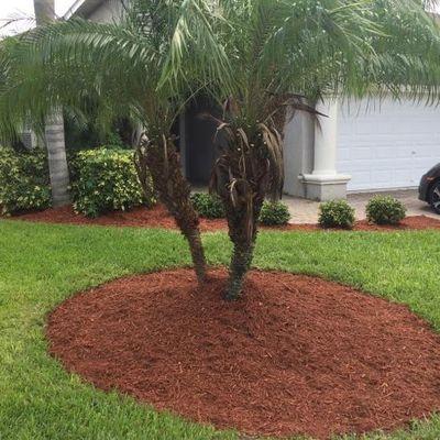 Blue Landscape & Designs Palm Bay, FL Thumbtack