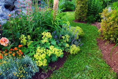 Green Earth Gardens and Landscapes LLC Northville, MI Thumbtack