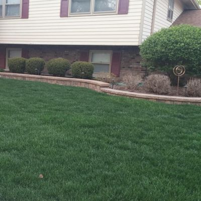 Ciraulo's Lawn and Landscaping Downers Grove, IL Thumbtack