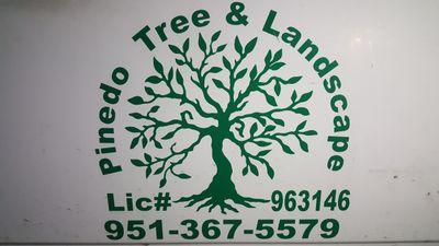 Pinedo Tree Service Moreno Valley, CA Thumbtack