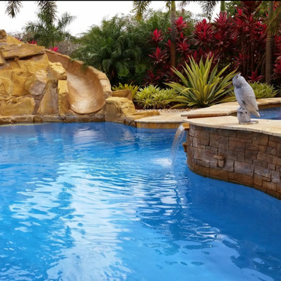 The Pool Service Guys Hollywood, FL Thumbtack