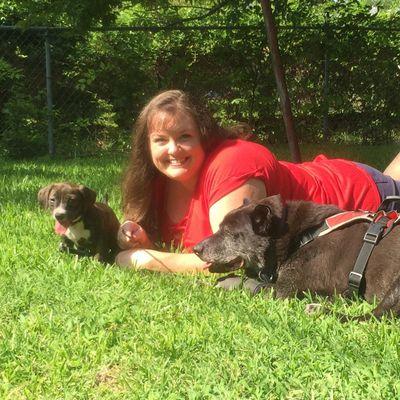 Traveling Dog Trainer Dallas, TX Thumbtack
