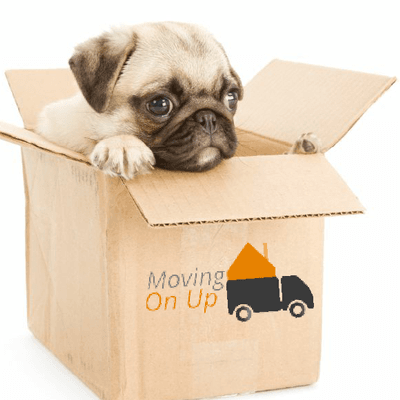 Moving on up ltd Mentor, OH Thumbtack