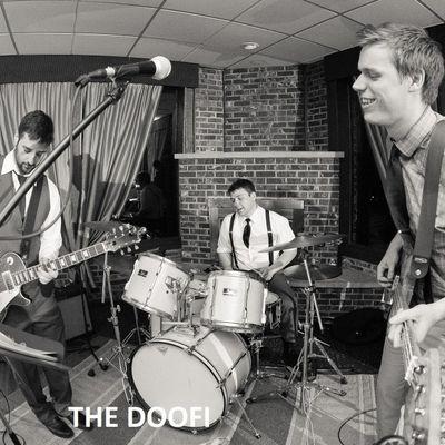 The Doofi Milwaukee, WI Thumbtack