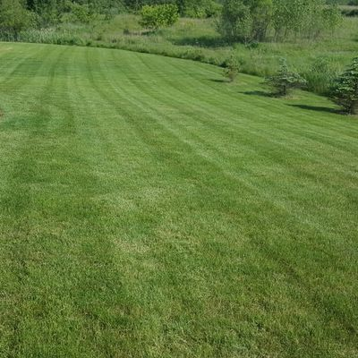Your Maintenance Free Lawn Services LLC Lansing, MI Thumbtack