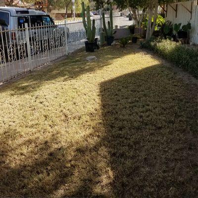 E&G Landscaping & Maintenance Calexico, CA Thumbtack