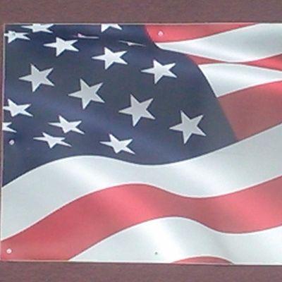 All American Tree Service Zephyrhills, FL Thumbtack