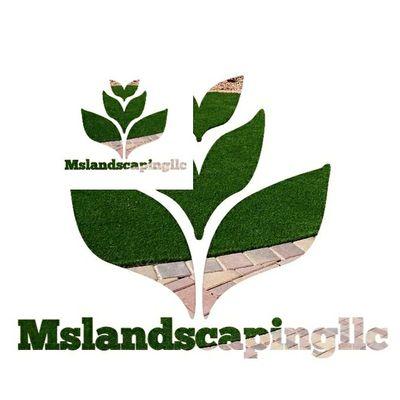MS Landscaping LLC Tucson, AZ Thumbtack