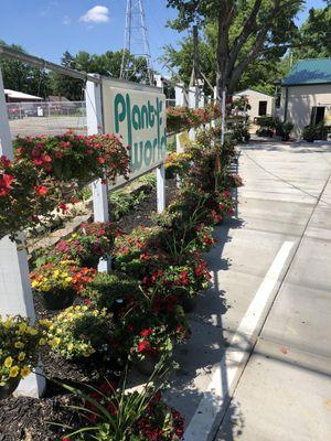 Plant World Nursery And Landscaping LLC Cincinnati, OH Thumbtack