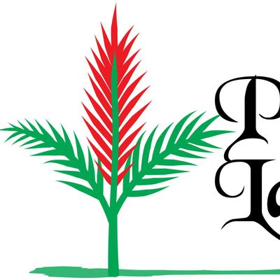 PACIFIC ISLAND LANDSCAPE LLC Kapolei, HI Thumbtack