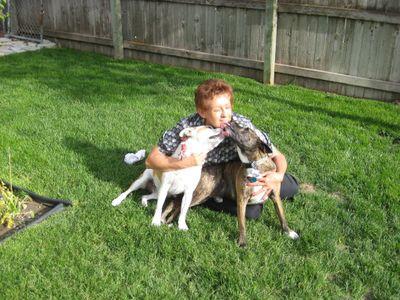 Doggie Do-Right Cheyenne, WY Thumbtack