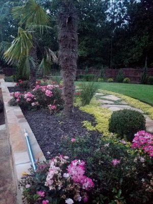 DP Landscaping and Tree Services Gainesville, GA Thumbtack