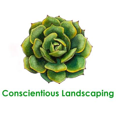 Conscientious Landscaping Costa Mesa, CA Thumbtack