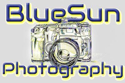 BlueSun Photography Shavertown, PA Thumbtack