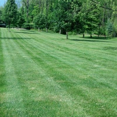 The 10 Best Lawn Care Services in New Philadelphia, OH 2019
