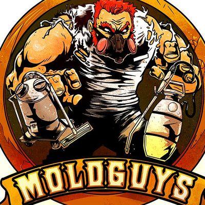 Moldguys Restoration LLC East Bridgewater, MA Thumbtack