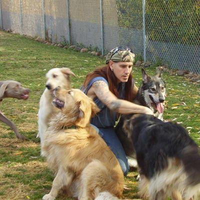 Eggers Dog Training Pasadena, CA Thumbtack