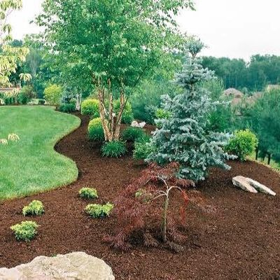 Brightside Landscaping LLC Germantown, MD Thumbtack