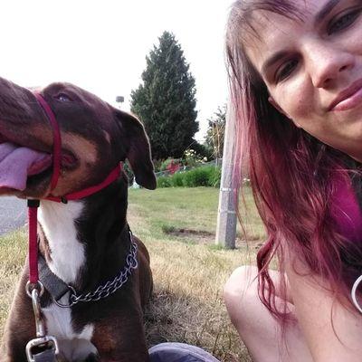 Leash the Dog Services Tacoma, WA Thumbtack