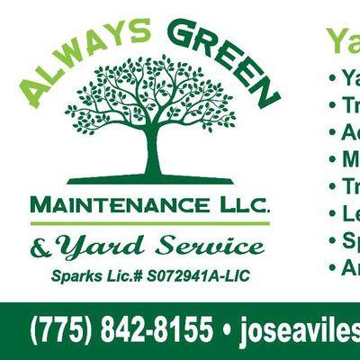 Always green maintenance Sparks, NV Thumbtack