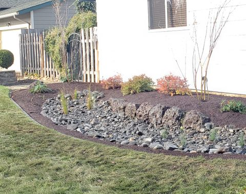 Rain Garden run off from gutters