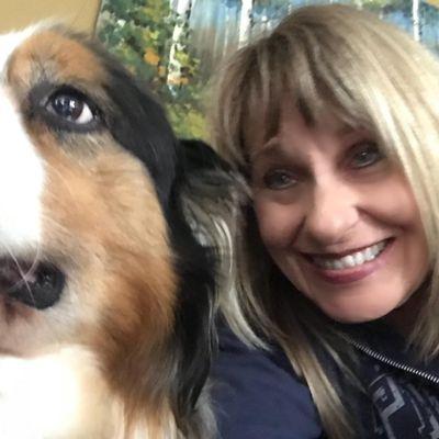 Leader of the Paws Canine Training Saint Clair, MI Thumbtack