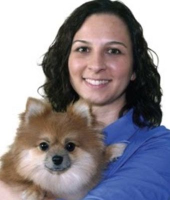 My Personal Dog Trainer Lombard, IL Thumbtack